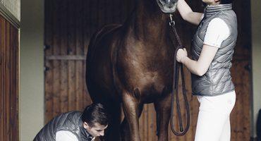 Polo Fleece Bandages, Ingress Boot, Halter Equiline, Samshield Swarovski Down Vest